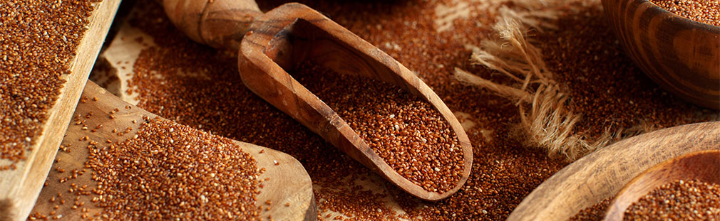 Tiny teff grain makes its USA food industry debut.